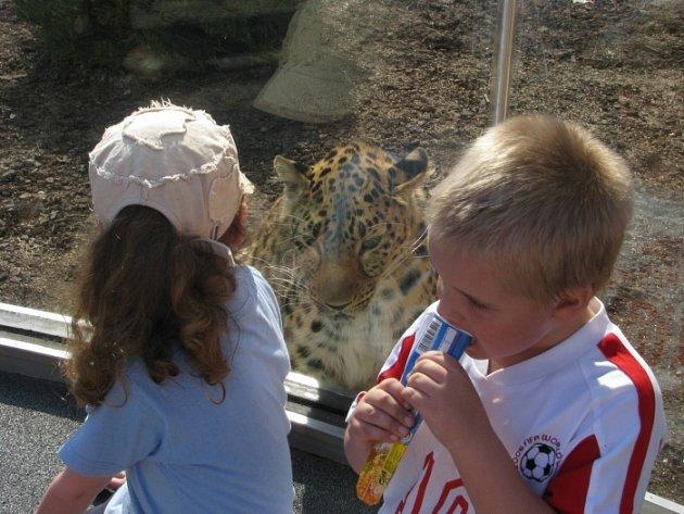 Velikonoce v ústecké zoo