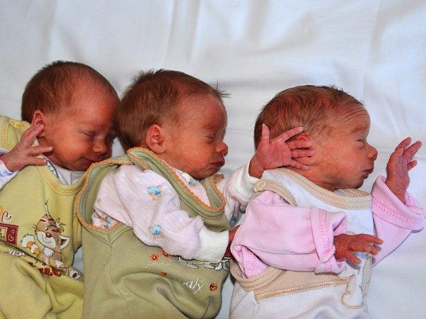 Vporodnici ústecké Masarykovy nemocnice se narodila druhá letošní trojčátka