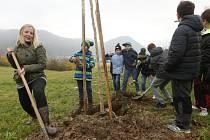 Se sázením stromů pomáhaly děti ze Základní školy Hluboká.