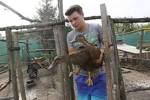 Adam Matouš z Předlic má malé zemědělské hospodářství.