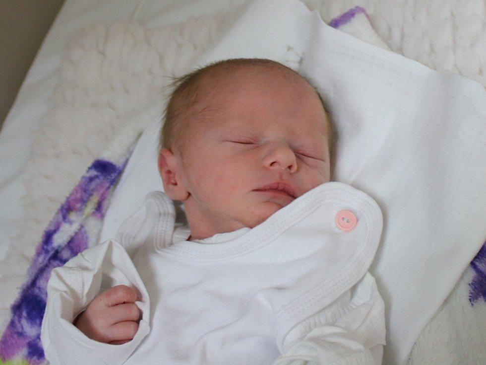 Eliška Urbanová se narodila v ústecké porodnici 20.1.2017 (16.45) Blance Urbanové. Měřil 43 cm, vážil 1,8 kg.