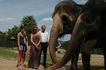 Zakončení sloního týdne v ústecké zoologické zahradě se zúčastnila i zpěvačka a herečka Monika Absolonová.