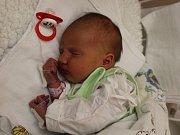 Adéla Čekalová se narodila 6.12. (7.36) Lucii Beránkové. Měřila 50 cm, vážila 3,11 kg.