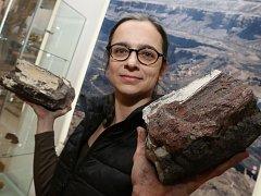 Výstava Minerály mostecké pánve začíná v Muzeu města Ústí nad Labem.