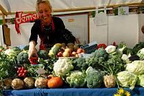 Ústečané by si přáli, aby se v Ústí konaly stejně kvalitní trhy jako v sousedních Drážďanech.