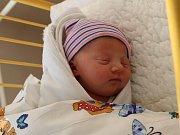 Karolína Bradáčová se narodila Janě Chundelákové z Ústí nad Labem 10.dubna v 15.42 hod. v ústecké porodnici. Měřila 48 cm a vážila 2,96 kg