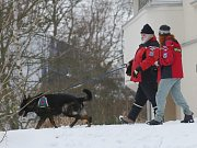 Policisté, hasiči a psovodi pročesávají okolí bydliště pohřešované školačky.