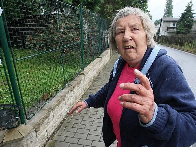 """Obyvatelka ústecké čtvrti Předlice Anna Nožičková ukazuje plot, který jí """"oloupali"""" zloději."""