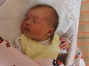 Julie Formánková se narodila v ústecké porodnici 16.11.2016 (3.54) Barboře Formánkové. Měřila 49 cm, vážila 3,10 kg.