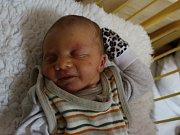 Dominik Král se narodil v ústecké porodnici 11. 2. 2017(21.57) Kateřině Novákové. Měřil 51 cm, vážil 3,17 kg.