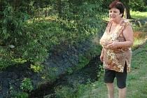 Červenec 2014: Ani kapku vody nesmí brát lidé z pěti potoků na Ústecku. V korytech je minimum vody. To ohrožuje ryby a další živočichy. Mezi postižené toky patří například Telnický potok (na snímku).