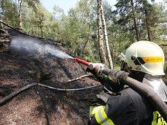 Požár lesního porostu v Tiských stěnách zaměstnal desíkty hasičů.