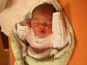 Zuzana Vodičková se narodila Zuzaně Vodičkové z Ústí nad Labem 1. listopadu v 13.26 hod. v ústecké porodnici. Měřila 48 cm a vážila 3,46 kg