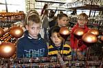 Žáci z Petrovic zjistili, jak se ručně vyrábí vánoční ozdoby.