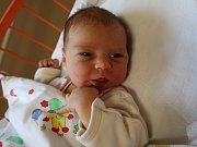 Tereza Zlámalová se narodila v ústecké porodnici 6. 5. 2017(17.25) Janě Zlámalové. Měřila 52 cm, vážila 3,71 kg.