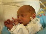 Josef Švajgl se narodil Kláře Švajglové a Michalu Švajglovi z Žežic 1. listopadu v 9.32 hod. v ústecké porodnici. Měřil 48 cm a vážil 2,73 kg