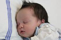 Dorota Šišková se narodila v ústecké porodnici 25.1.2015 (4.47) mamince Miroslavě Šiškové. Měřila 49 cm, vážila 3,35 kg.