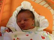 Jaroslav Herout se narodil Vladislavě Heroutové z Ústí nad Labem 8. listopadu v 11.59 hod. Měřil 51 cm, vážil 3,14 kg