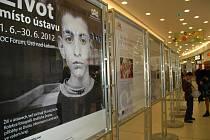 V některých případech kontroverzní výstava v OC Forum má lidi přesvědčit, že handicapovaní mají právo žít v domácnostech jako kdokoli jiný.