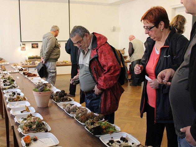 Odborník Jiří Roth pro návštěvníky připravil výstavu více jak stovky hub.