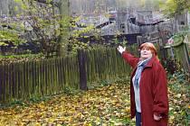 Betonová zeď držící sesuv svahu Čertovka je jen pár metrů od zahrady a domu Jany Hájkové. Ta se bojí padajících kamenů a vody, která odtud při deštích teče.