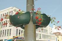 Truhlíky s květinami poblíž kina Hraničář.