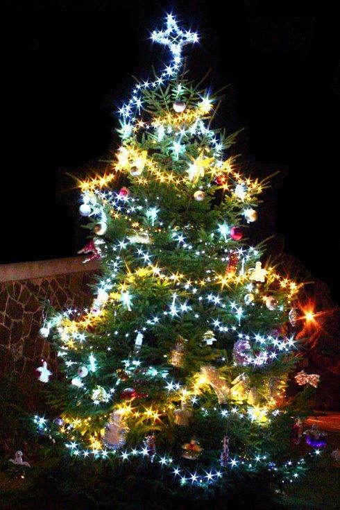Vánoční strom se rozsvítil také v Sebuzíně.