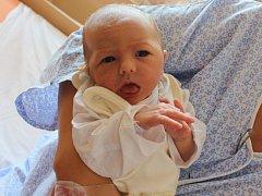 Mia Vilma Stromová se narodila v ústecké porodnici 25.7.2016 (9.32) mamince Vladimíře Beranové. Vážila 3,31 kg.