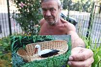 . Možná už deset let zdobí bezprizorní malou zahrádku v centru města Vladimír Soumar (57), školník ústecké zdravotnické školy