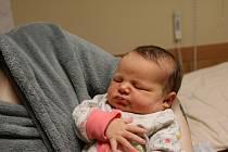 Natálie Nováková se narodila Janě Belové z Teplic 23. února v 16.30 hodin v Ústí nad Labem. Měřila 52 cm, vážila 3,97 kg