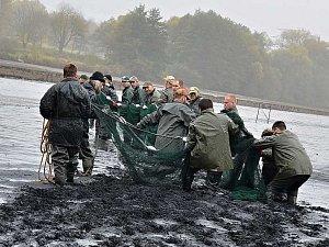 Výlov Habrovického rybníka přilákal stovky diváků