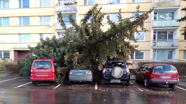 Vústecké ulici U pivovarské zahrady spadl na zaparkovaná vozidla statný smrk a částečně je poškodil