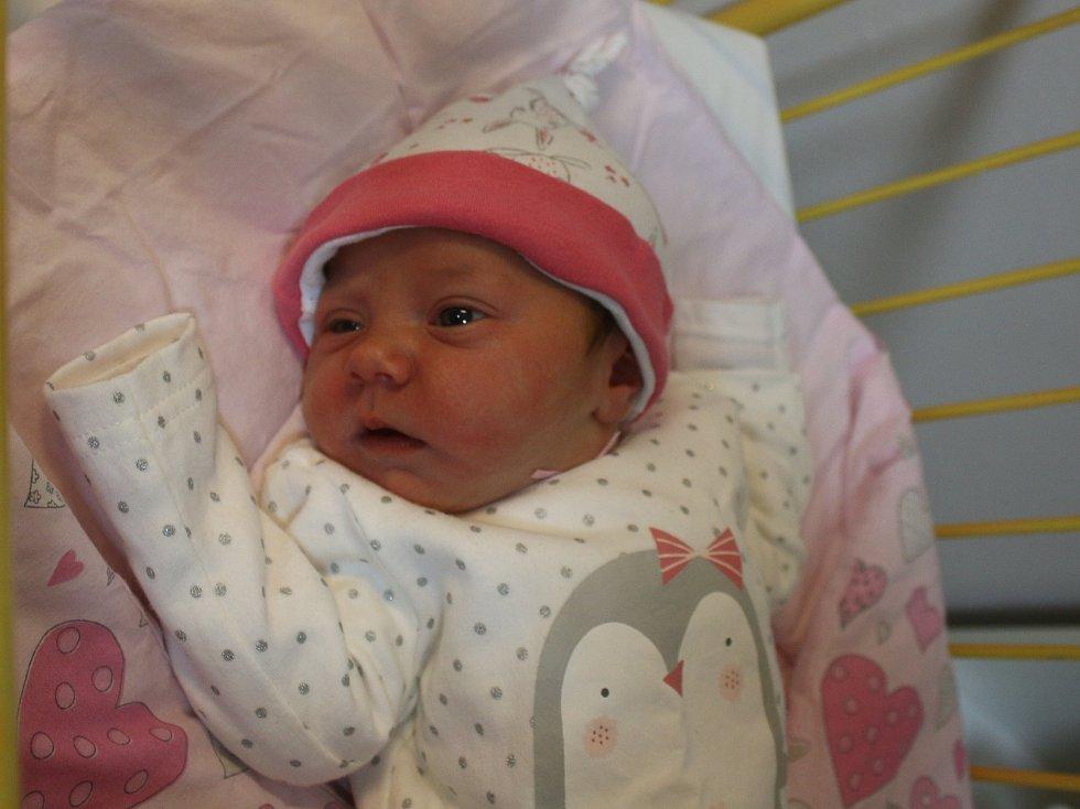 Amálka Licková se narodila Daně Lickové a Luboši Lickovi z Ústí nad Labem 18.ledna v 0.12 hod. v ústecké porodnici. Měřila 51 cm a vážila 3,44 kg