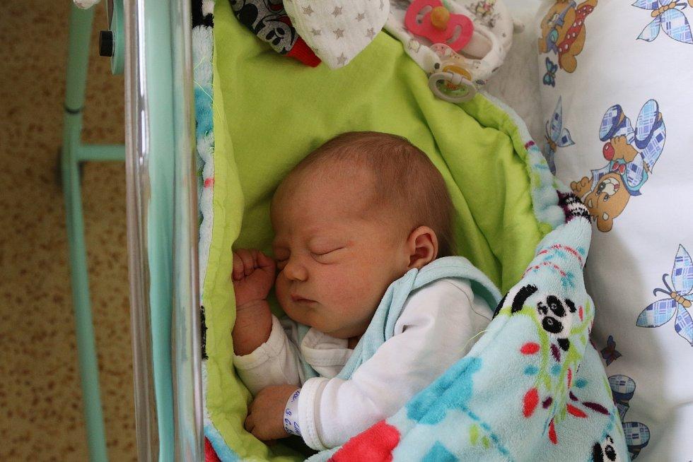 Linda Nová se narodila Martině Nové z Teplic 3. června ve 2.26 hodin v Ústí nad Labem. Měřila 50 cm, vážila 3,32 kg