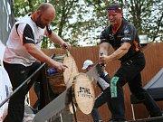 O víkendu probíhal v letním kině 5. ročník Festivalu dřeva