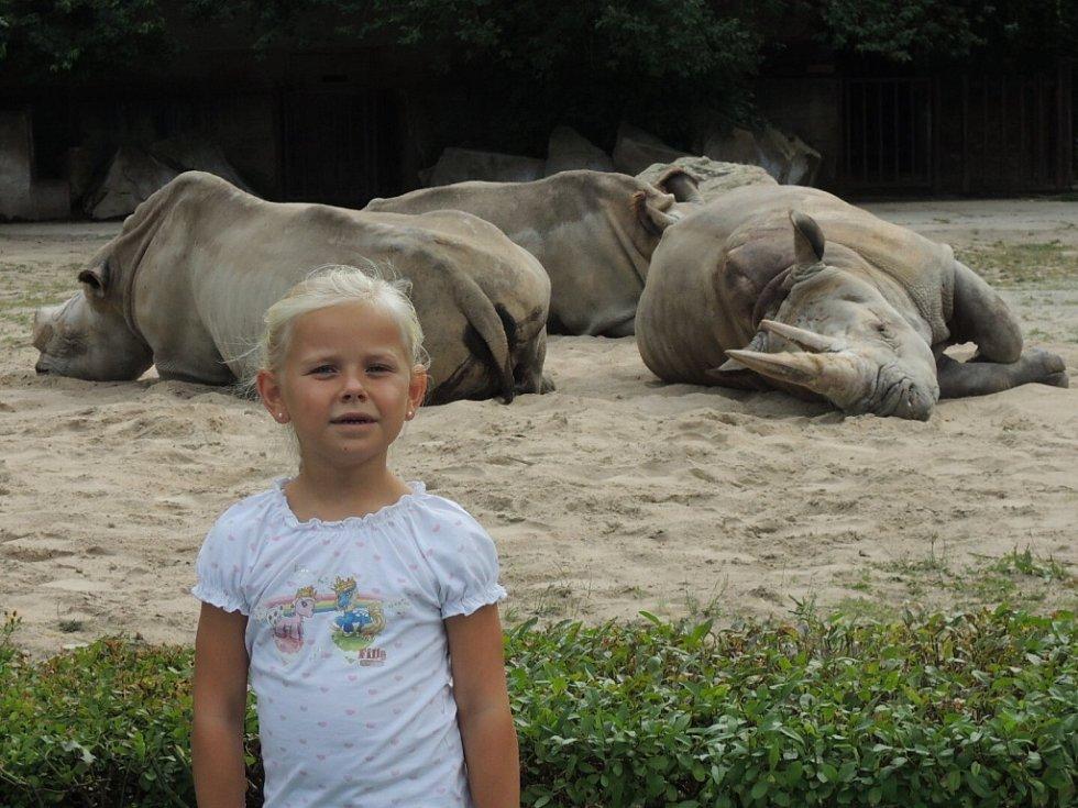 Za exotikou nemusíte jezdit daleko. Stačí vyrazit na safari do Dvora Králové. Na obrázku, který zaslala Vladimíra Hofmanová z Ústí nad Labem, je její vnučka Terezka.