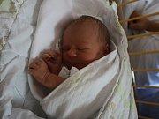 Lilly Havelcová se narodila Petře Havelcové z Ústí nad Labem 28. srpna v 9.56 hod. v ústecké porodnici. Měřila 46 cm a vážila 2,48 kg.