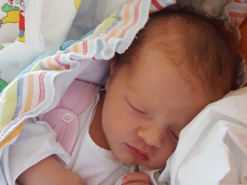 Zuzana Plachá se narodila v ústecké porodnici 14. 2. 2017 (18.08) Zuzaně Šimkové. Měřila 49 cm, vážila 3,40 kg.