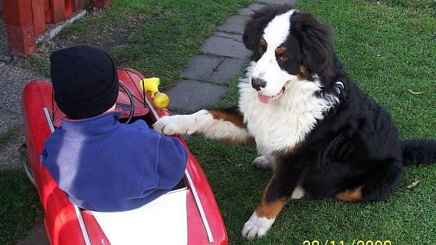 Čtyřletý Martínek a jeho psí kamarád Ben.