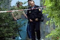 Rittich tělo družky s pomocí kuchyňských nožů a ruční pilky v bytě rozřezal na několik částí.