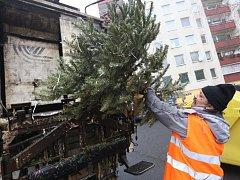 Odvoz vánočních stromků.