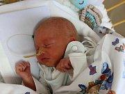 Jan Waldhauser se narodil Lucii Marešové v Ústí nad Labem 31. října v 11.39 hod. Měřil 46 cm, vážil 2,49 kg