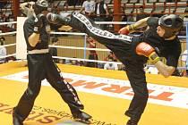 Z mistrovství v kickboxu.