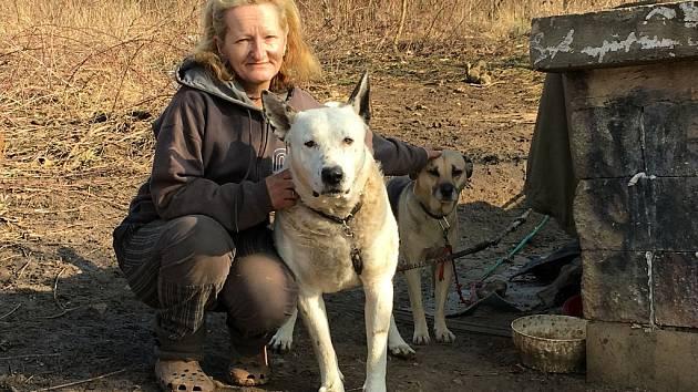 Osamělá třiapadesátiletá Jitka skončila se svými psi po hádce s přítelem na ulici. Ústí jí nabídne pomoc, chce jí koupit Iglou.