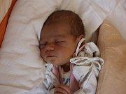 Viktorie Závůrková se narodila Adéle Naštické z Ústí nad Labem 22. srpna v 9.33 hod. v ústecké porodnici. Měřila 50 cm a vážila 3,05 kg.