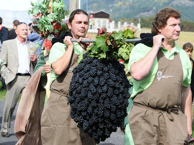Třebívlické vinobraní 2012.