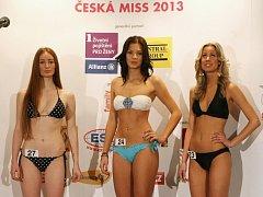 Casting na Českou miss 2013 ve Foru v Ústí nad Labem.