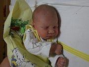 Marie Harvatovičová se narodila v ústecké porodnici 15. 2. 2017 (23.35) Boženě Harvatovičové. Měřila 48 cm, vážila 2,85 kg.