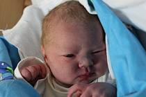 Alena Vyšínová  se narodila v ústecké porodnici 8.12. (8.13) Veronice Vyšínové. Měřila 49 cm, vážila 3,57 kg.