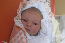 Šárka Havlíková se narodila Šárce Havlíkové z Ústí nad Labem 2. února v 11.58 hodin v Ústí nad Labem. Měřila 50 cm, vážila 3,5 kg